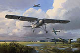 Fieseler Fi156 Storch - by Mark Postlethwaite