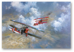 Last Combat of the Red Baron