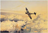 Wings of Glory - by Robert Taylor