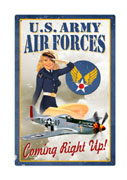 Air Force Pin-Up