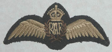 Original RAF wings