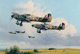 Maple Leaf Scramble - by Robert Taylor