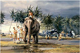 Puttalam Elephants - by Robert Taylor